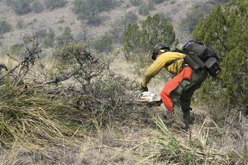 FILE - In this June 2, 2012 file photo, a firefighter from the Granite Mountain Hotshots of Prescott, Ariz. clears brush along a ridge line in the Gila National Forest outside Mogollon, N.M. On Sunday, June 30, 2013, a fast-moving wildfire killed 19 firefighters from the Prescott-based group after the blaze raced through the central Arizona town of Yarnell, about 85 miles northwest of Phoenix. &#40;AP Photo&#47;U.S. Forest Service, Tara Ross&#41; <span class=meta>(AP Photo&#47; Tara Ross)</span>