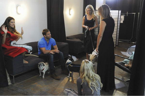 "<div class=""meta image-caption""><div class=""origin-logo origin-image ""><span></span></div><span class=""caption-text"">THE BACHELOR - ""Episode 1802"" - Thirteen women meet up with the handsome single dad for a photo shoot benefitting Best Friends Animal Society, an organization that focuses on the plight of animals in need. Each bachelorette is assigned a dog and takes a photo with the pup and Juan Pablo. However, when several revealing costumes are unveiled, two women go into an emotional tailspin and have second thoughts about whether they should continue with the shoot. Lucy rushes to the aid of one of her struggling counterparts by offering to go ""au natural."" But at that evening's after party, one woman steals the spotlight when she has a meltdown over not getting one-on-one time with Juan Pablo and derails the night. Will Juan Pablo forgive this bachelorette and chalk up the outburst to nerves or will this be the end of the line for her? - on ""The Bachelor,"" MONDAY, JANUARY 13 (8:00-10:01 p.m., ET), on the ABC Television Network. (ABC/Todd Wawrychuk) LUCY, JUAN PABLO GALAVIS, NIKKI (ABC Photo/ Todd Wawrychuk)</span></div>"