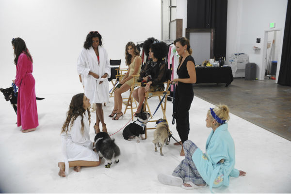 "<div class=""meta image-caption""><div class=""origin-logo origin-image ""><span></span></div><span class=""caption-text"">THE BACHELOR - ""Episode 1802"" - Thirteen women meet up with the handsome single dad for a photo shoot benefitting Best Friends Animal Society, an organization that focuses on the plight of animals in need. Each bachelorette is assigned a dog and takes a photo with the pup and Juan Pablo. However, when several revealing costumes are unveiled, two women go into an emotional tailspin and have second thoughts about whether they should continue with the shoot. Lucy rushes to the aid of one of her struggling counterparts by offering to go ""au natural."" But at that evening's after party, one woman steals the spotlight when she has a meltdown over not getting one-on-one time with Juan Pablo and derails the night. Will Juan Pablo forgive this bachelorette and chalk up the outburst to nerves or will this be the end of the line for her? - on ""The Bachelor,"" MONDAY, JANUARY 13 (8:00-10:01 p.m., ET), on the ABC Television Network. (ABC/Todd Wawrychuk) LUCY, CHANTEL, CASSANDRA, CHELSIE, RENEE, CHRISTY (ABC Photo/ Todd Wawrychuk)</span></div>"
