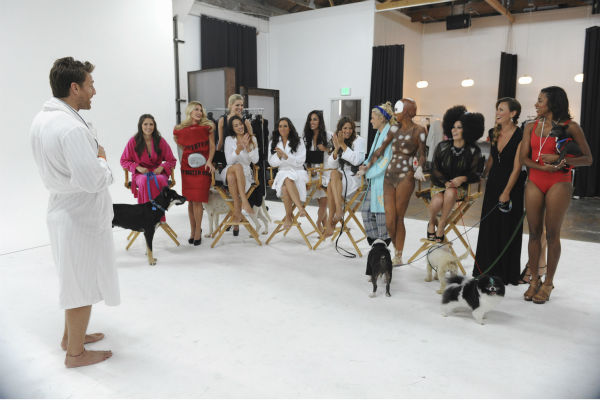 "<div class=""meta image-caption""><div class=""origin-logo origin-image ""><span></span></div><span class=""caption-text"">THE BACHELOR - ""Episode 1802"" - Thirteen women meet up with the handsome single dad for a photo shoot benefitting Best Friends Animal Society, an organization that focuses on the plight of animals in need. Each bachelorette is assigned a dog and takes a photo with the pup and Juan Pablo. However, when several revealing costumes are unveiled, two women go into an emotional tailspin and have second thoughts about whether they should continue with the shoot. Lucy rushes to the aid of one of her struggling counterparts by offering to go ""au natural."" But at that evening's after party, one woman steals the spotlight when she has a meltdown over not getting one-on-one time with Juan Pablo and derails the night. Will Juan Pablo forgive this bachelorette and chalk up the outburst to nerves or will this be the end of the line for her? - on ""The Bachelor,"" MONDAY, JANUARY 13 (8:00-10:01 p.m., ET), on the ABC Television Network. (ABC/Todd Wawrychuk) JUAN PABLO GALAVIS, ALLI, ELISE, NIKKI, ANDI, LAUREN S., VICTORIA, LUCY, CHRISTY, KELLY, CHELSIE, RENEE, CHANTEL (ABC Photo/ Todd Wawrychuk)</span></div>"