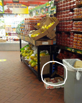 "<div class=""meta image-caption""><div class=""origin-logo origin-image ""><span></span></div><span class=""caption-text"">Rats were captured on camera running around inside the Fairway Supermarket on the Upper West Side.  From http://myupperwest.com. (http://myupperwest.com)</span></div>"