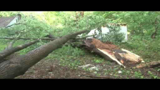 "<div class=""meta image-caption""><div class=""origin-logo origin-image ""><span></span></div><span class=""caption-text"">Dozens of trees were knocked down in Lake Carmel, New York after evening of heavy rain and flooding across the Tri-State Area.  (WABC Photo)</span></div>"