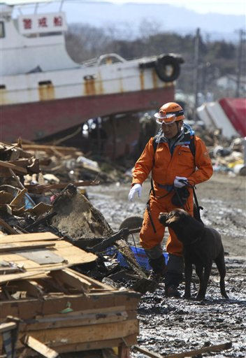 A rescuer uses a sniffer dog to look for missing persons in the rubble in Soma, Fukushima prefecture, northern Japan, Saturday, March 12, 2011, after being washed away by an earthquake-triggered tsunami. The powerful tsunami created by one of the strongest earthquakes ever recorded swept away Japan&#39;s east coast Friday. &#40;AP Photo&#47;The Yomiuri Shimbum, Kazuki Wakasugi&#41; JAPAN OUT, CREDIT MANDATORY <span class=meta>(AP Photo&#47; Kazuki Wakasugi)</span>
