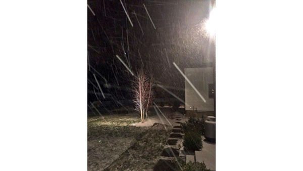 The flakes are falling across Long Island.  <span class=meta>(WABC Photo)</span>
