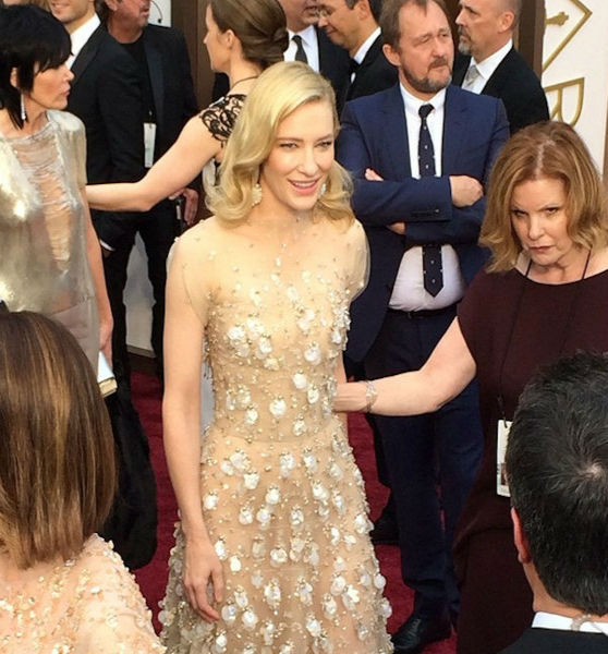 How about that dress? Cate Blanchett makes her red carpet entrance.
