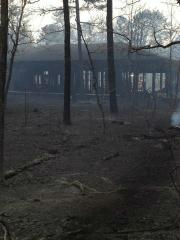 A large brush fire burned through parts of Manorville, Long Island. <span class=meta>(WABC Photo)</span>