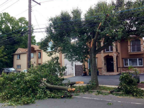 "<div class=""meta ""><span class=""caption-text "">Thousands of customers on Long Island were without power Tuesday after a man driving a stolen MTA truck apparently knocked down blocks of power poles and wires. (WABC Photo/ Kristin Thorne)</span></div>"