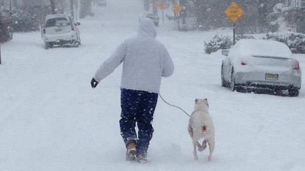 Mike and Zeus in the snow!