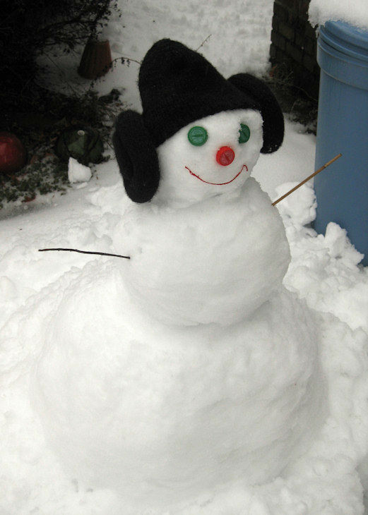 "<div class=""meta ""><span class=""caption-text "">The Vetack Family snowman (February 5, 2014)</span></div>"