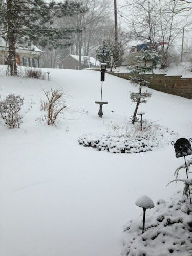 Snow in Oakland, New Jersey.