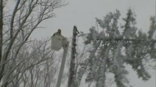 Crews chopped down trees on Long Island that appeared to be in danger of falling because of the weight of the heavy wet snow.