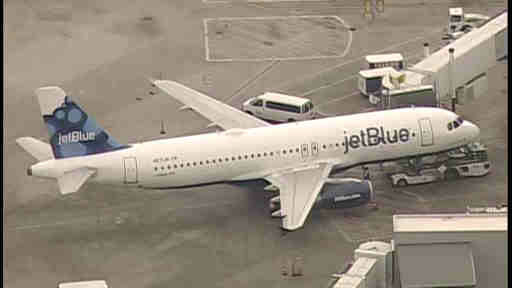 A JetBlue plane was forced to make an emergency landing at John F. Kennedy International Airport Friday after it struck a bird.