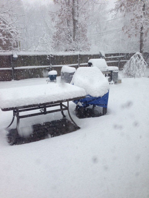 "<div class=""meta ""><span class=""caption-text "">Surprise snow in Holbrook, NY on Monday, March 31, 2014.</span></div>"