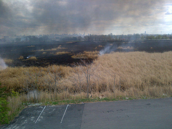 Aftermath of a brush fire in Carlstadt, New Jersey (Photo by N.J. Burkett)