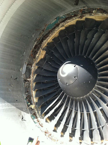 Photo obtained by Eyewitness News of the engine involved in an apparent bird strike.