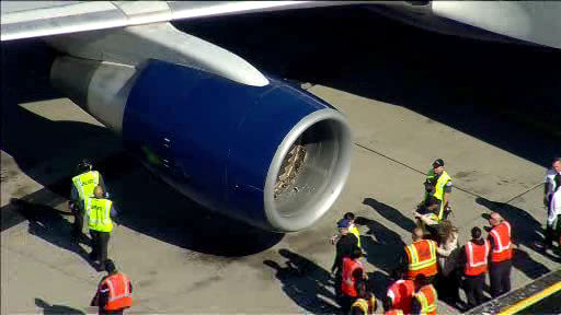 "<div class=""meta ""><span class=""caption-text "">A Delta flight bound for Los Angeles made an emergency landing at JFK Airport after sustaining an apparent bird strike shortly after takeoff.</span></div>"