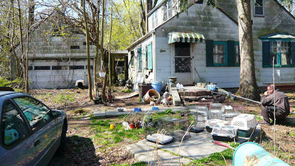 "<div class=""meta ""><span class=""caption-text "">Authorities removed scores of animals discovered inside a condemned house in Central Islip on Long Island.  (Photo/?íó	WW?w?_J??h?`I