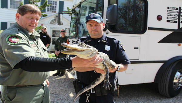 Anyone with an illegal reptile or amphibian had a chance to turn it in to the Suffolk County SPCA Saturday without being punished.