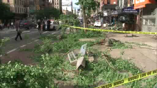 A car rocketing down an avenue in East Village swerved out of control, plowed down a sidewalk and smashed through a storefront flower stand Wednesday morning, witnesses and officials said.
