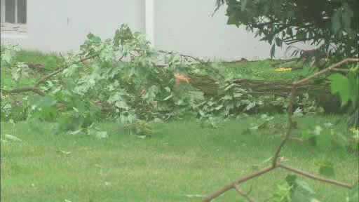 "<div class=""meta ""><span class=""caption-text "">Storm damage from what may have been a tornado in Berkeley Heights, New Jersey.   The National Weather Service is investigating.</span></div>"