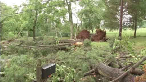"<div class=""meta ""><span class=""caption-text "">Storm damage in Branchburg, NJ</span></div>"