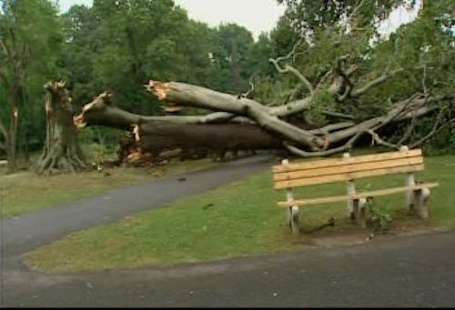 Storm damage in Glen Cove, Long Island on Wednesday, July 18, 2012.