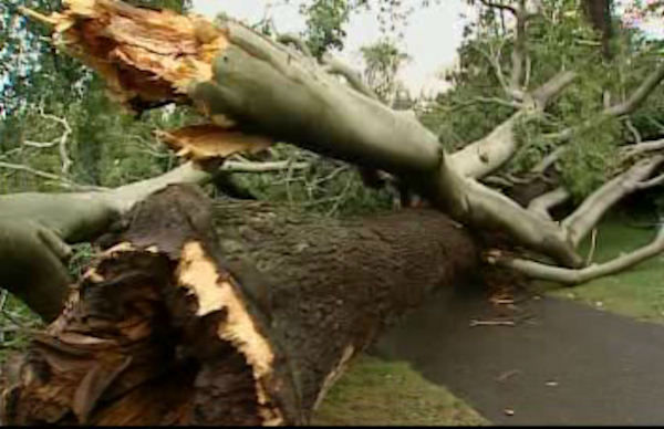"<div class=""meta image-caption""><div class=""origin-logo origin-image ""><span></span></div><span class=""caption-text"">Storm damage in Glen Cove, Long Island on Wednesday, July 18, 2012.</span></div>"