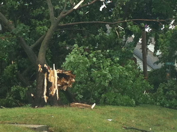 Tree down knocked out power on Foch St. And Cheesequake Rd. in Sayreville, New Jersey.