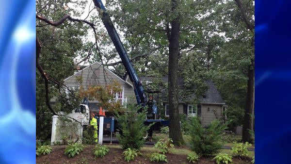 "<div class=""meta ""><span class=""caption-text "">No one was injured when the top of an old oak tree fell on a home in Ridgewood, New Jersey, early Tuesday.</span></div>"