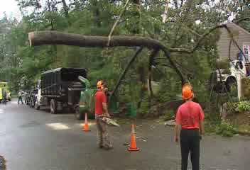 "<div class=""meta image-caption""><div class=""origin-logo origin-image ""><span></span></div><span class=""caption-text"">No one was injured when the top of an old oak tree fell on a home in Ridgewood, New Jersey, early Tuesday.</span></div>"