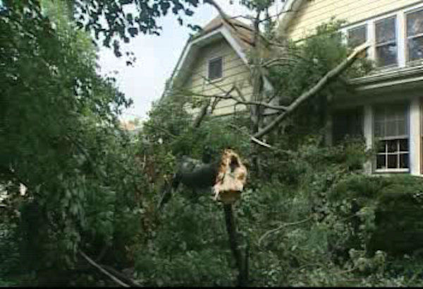 Damage in Leonia, New Jersey following storms on Thursday, September 29, 2011.