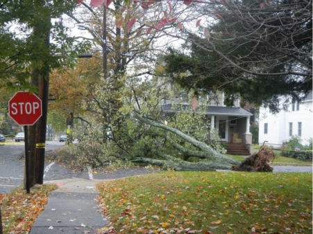 Hawthorne, NJ. Courtesy: Mary Woolley (Twitter follower)