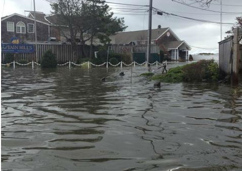 Bayshore Marina, Long Island. Courtesy: Kristin Thorne