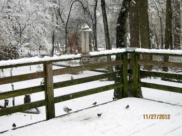 Snow in Airmont, New York on November 27, 2012 from an Eyewitness News viewer.