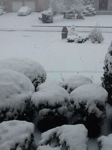 Morris Plains on November 27, 2012 from an Eyewitness News viewer.