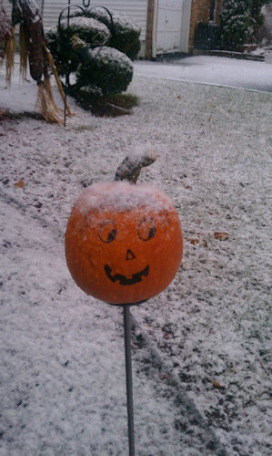Snow in Nutley, NJ on November 27, 2012 from an Eyewitness News viewer.