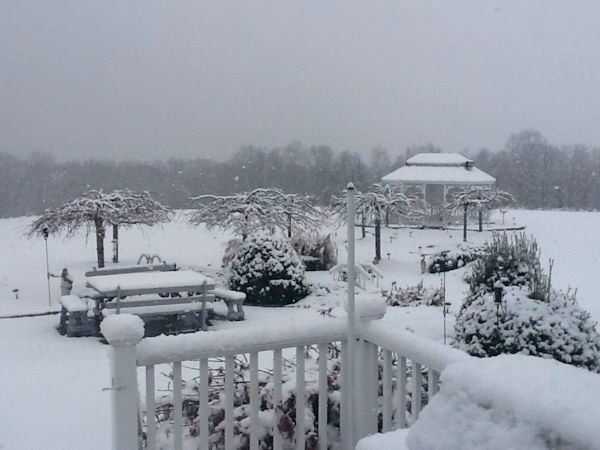 Wantagh on November 27, 2012 from an Eyewitness News viewer.