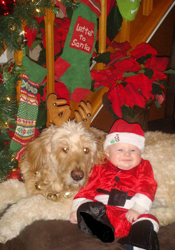 Holiday photos from Eyewitness News viewers.  Share yours at http://iwitness.7online.com.