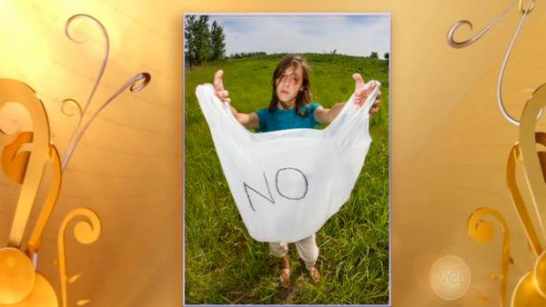 Grayslake girl, 12, campaigns for plastic bag ban