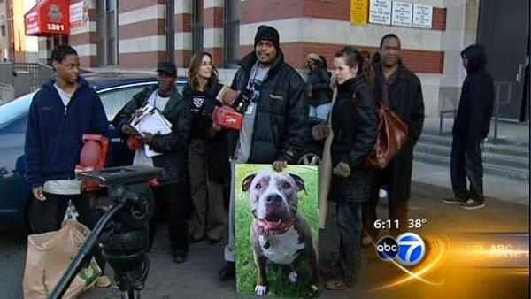 Michael Vick condemns dog fighting at Chicago school