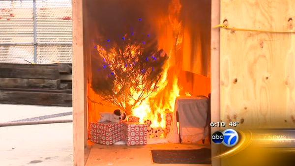 Fire officials promote Christmas tree safety
