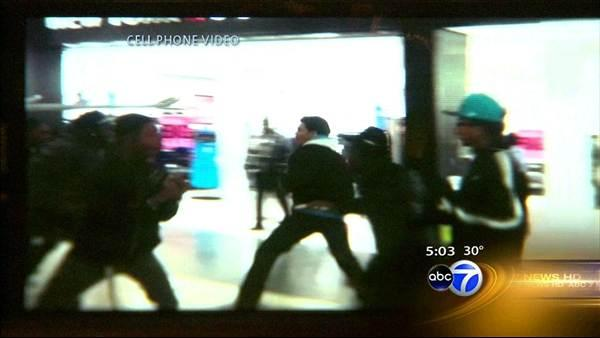 Calumet City mall fight caught on video