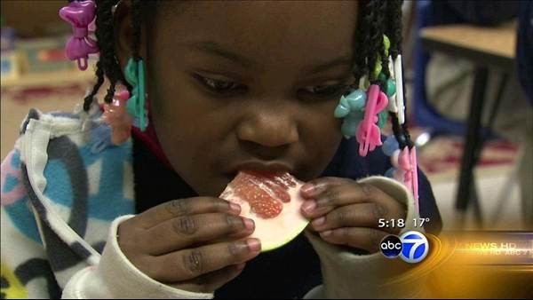 Who wants a kumquat? Non-profit exposes kids to seasonal food