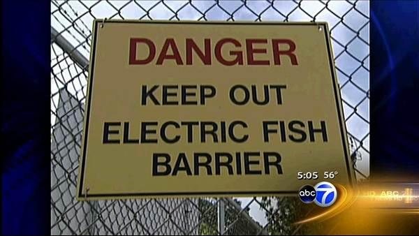 New plan to keep Asian carp out of Great Lakes