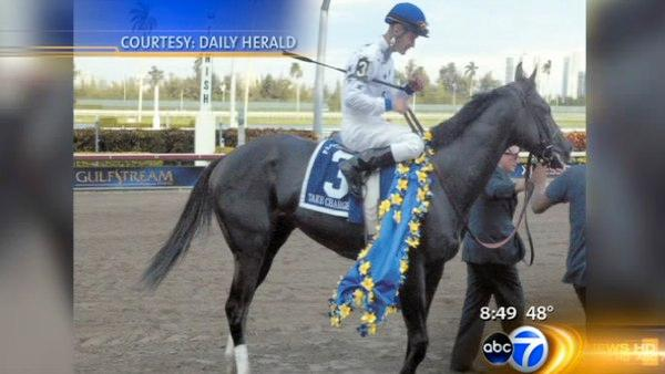 Daily Herald: Kentucky Derby Frontrunner