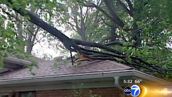 Storm leaves damage in north suburbs