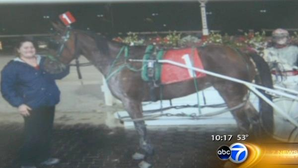 Horse shot to death day before Balmoral race