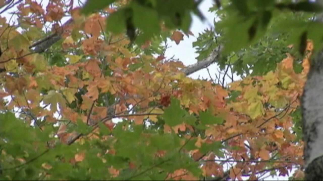Fall colors come early to Door County, Wisconsin