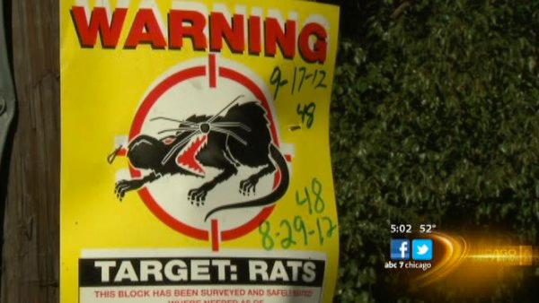 Pest control cleans up school after kids sickened by rat droppings
