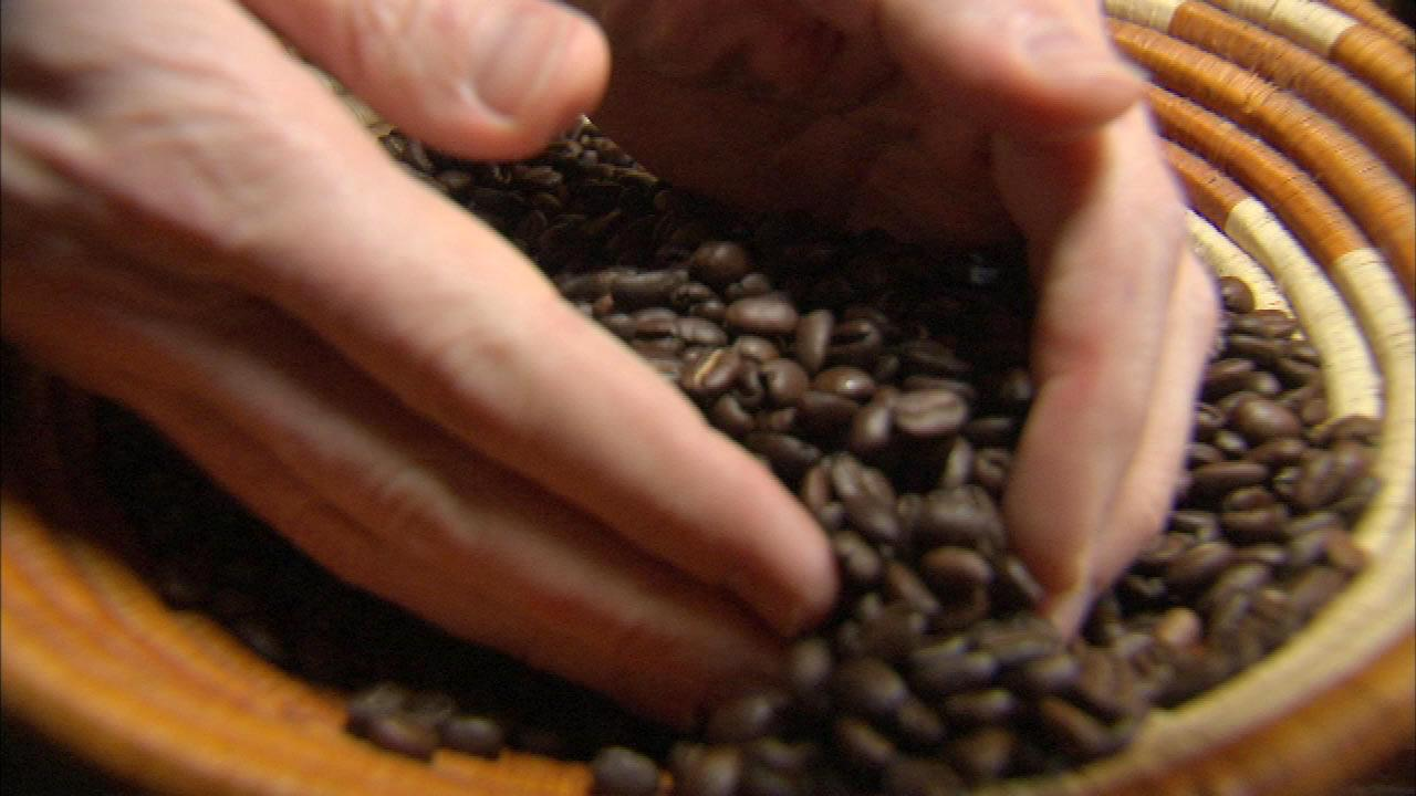 Dozens of Chicago coffee shops roast their own beans